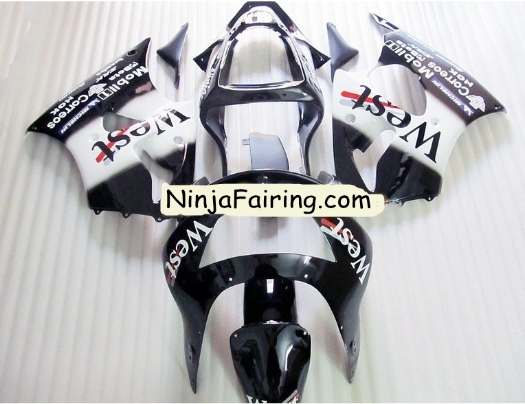Custom motorcycle bodywork ---Black White West