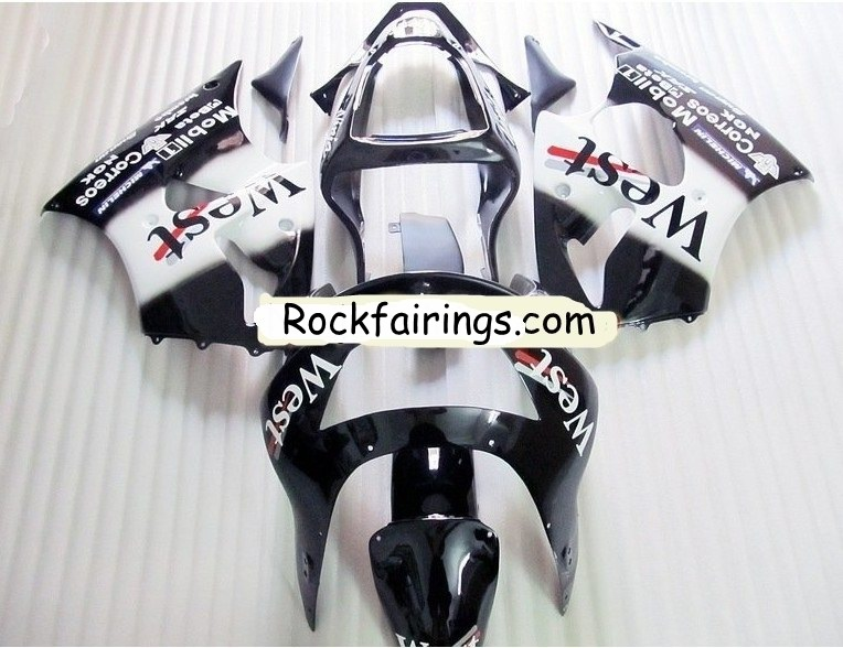 Custom motorcycle bodywork fairing for ninja zx6r ---Black White